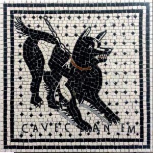 Mosaico Cave Canem