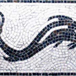 Mosaico Delfín